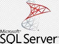 sql server support